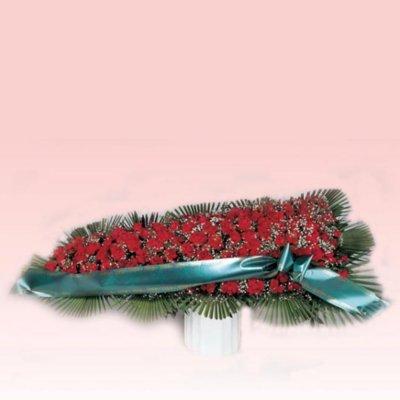 copribara-rose